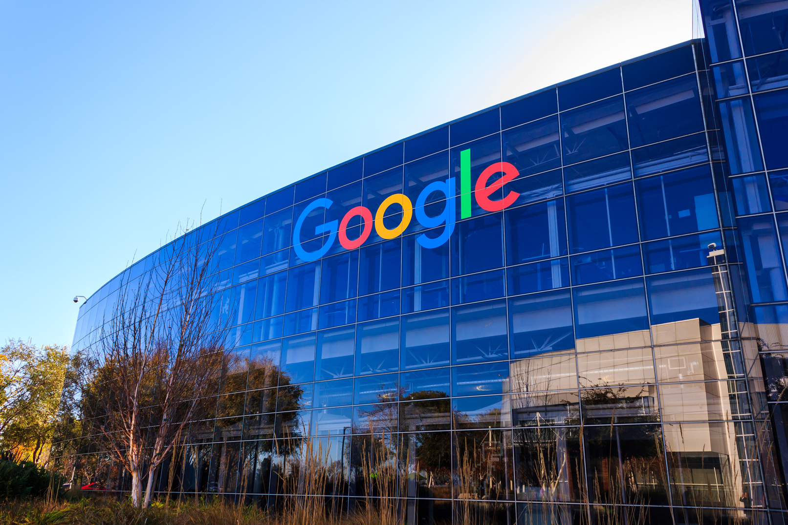 Google Cannot Restrict Employees' Free Speech According to the Government